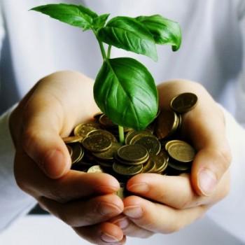 economie-croissance-verte-768x1024-350x350